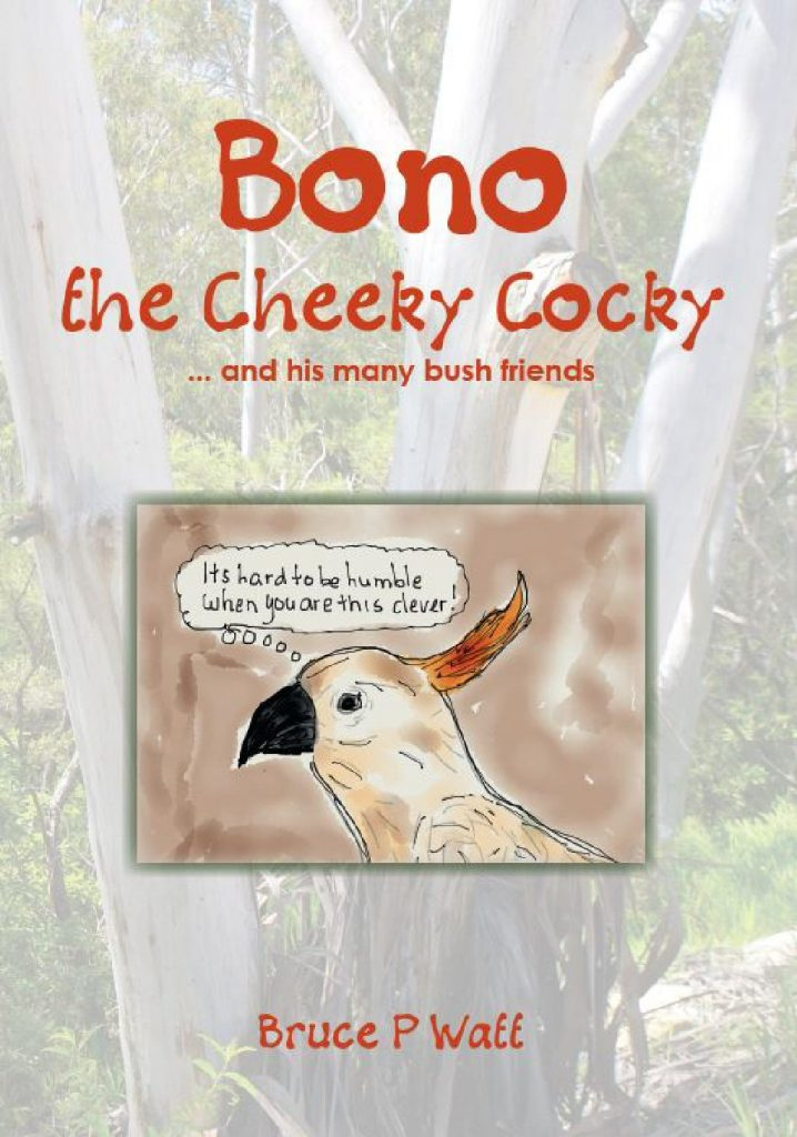 Bono the Cheeky Cocky